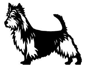 Grupp 3 - FCI nr. 8 / Australisk Terrier (Siluett)
