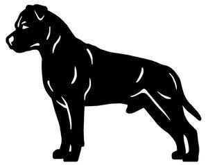 Grupp 3 - FCI nr. 286 / American Staffordshire Terrier (Siluett)