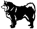 Grupp 5 - FCI  nr. 189 / Finsk Lapphund (Siluett)