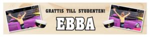 Student banderoll 30x120 cm
