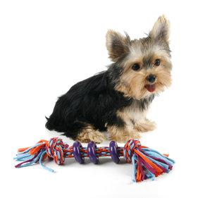 Tuggleksak - Chew and Play - Lila