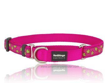 Stars Martingale dog collar Hot Pink