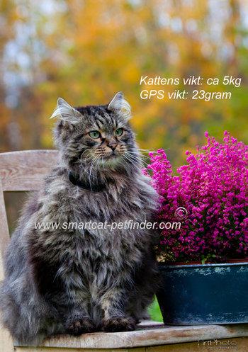 SmartCat GPS