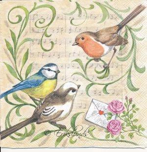 Romantiska fåglar   3108