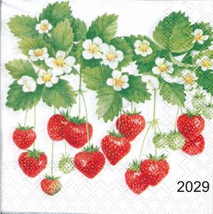 Jordgubbar  kaf2029