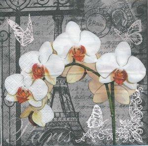 Orkide med Eifeltorn  8214
