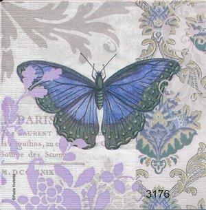 Blå fjäril  3176