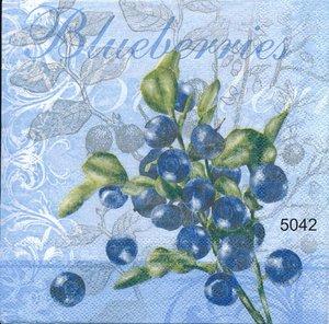 Blueberries     5042