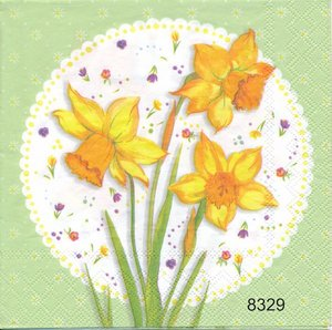 Narcisser  8329