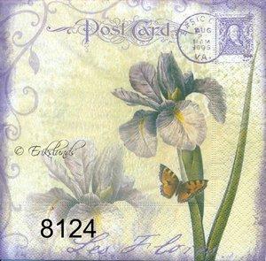 Post Card iris  8124