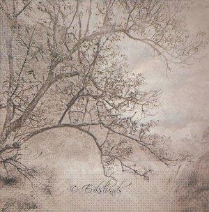 Träd i brunbeiga nyanser   3237