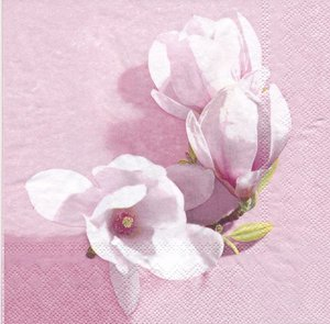 Magnolia 2 olika motiv  8253