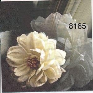 Gråvit svart nyans  8165