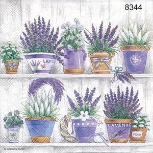 Lavendel på hylla  8344