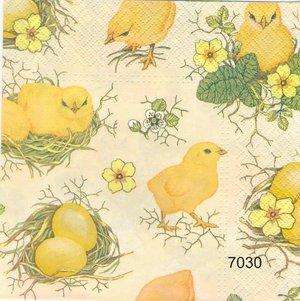 Kycklingar och ägg