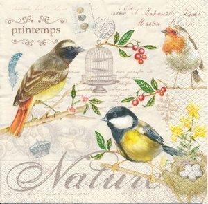 Fåglar och bur   3031