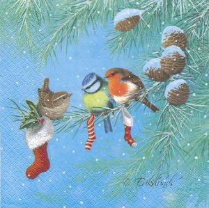 Små fåglar på gren   3122