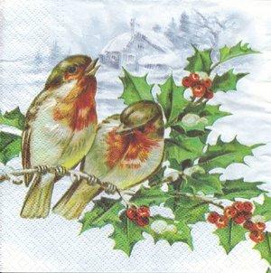 Vinterfåglar   3126