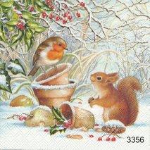 Fågel och ekorre i snön   kaf1048