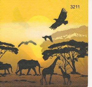 Savannens djur   3211