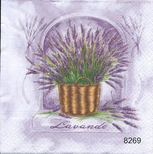 Lavendel  8269