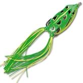 Bronzeye Frog