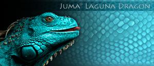 Juma Laguna Dragon skala