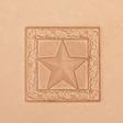 3D Puns - Star 8672