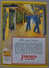 VYKORT/JAMAICA