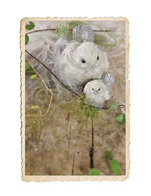 Små söta fåglar i ett set om två stycken