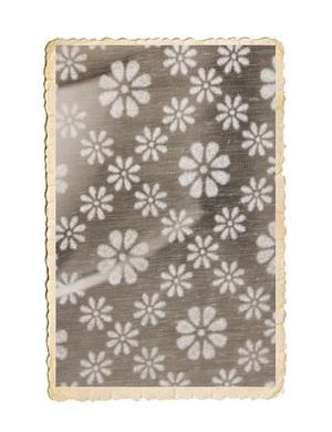 Rulle transparent blommigt tyg