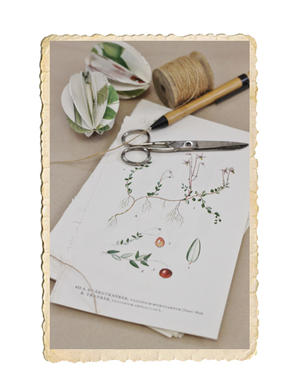 Bunt med florabilder, 10 st