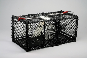 Lobster Creel, rectangular, 15 KG