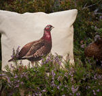Kuddfodral 50x50cm - Grouse