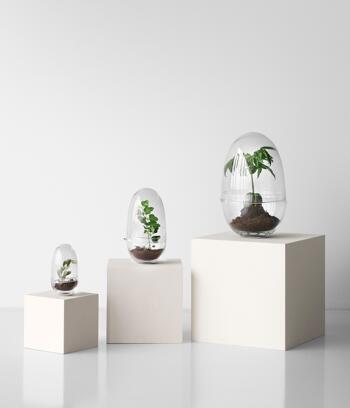 Design House Stockholm -Grow- glasägg