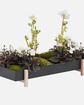 Design House Stockholm -Botanic tray