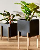 Design House Stockholm -Botanic pot ,2 Storlekar