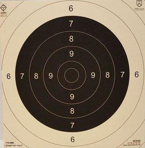 Spegel till Nationell Pistoltavla, 500/frp