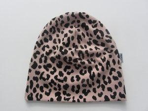 Rosa leopard