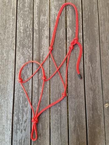 Standard rope halter - X-full, Red