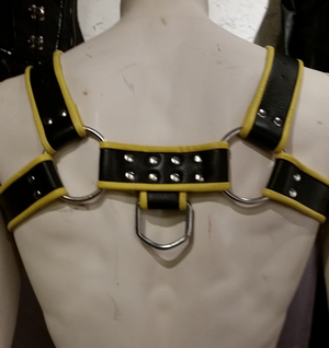 Leather Bondage Chest Harness