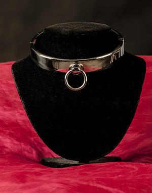 Rostfritt Collar 20 x 120 mm