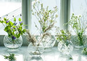 Organic Vase Globe Big