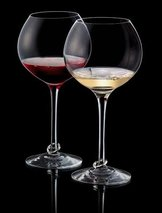 Amor Vincit Omnia Wine 2-pack
