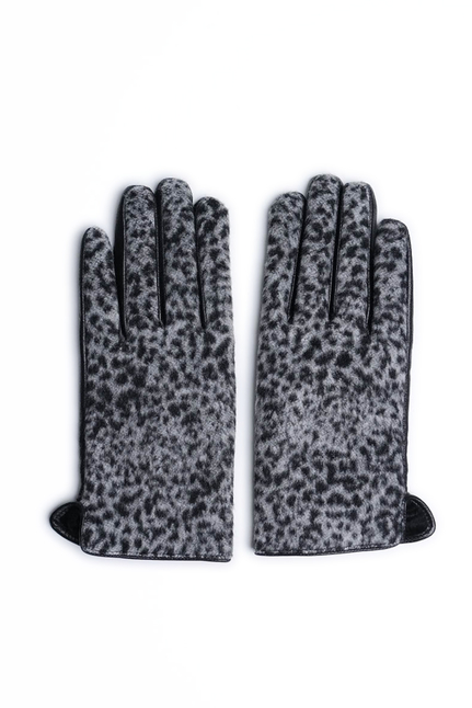 Maya Snow Leopard
