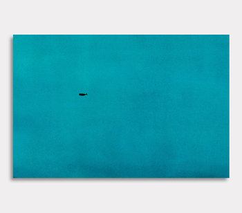Leinwand Gemälde, Valdemar der Wal – Der Ozean ist gross