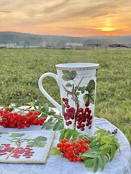 Jumbomugg 0,6 l - Jardin D´Hiver Röda Vinbär
