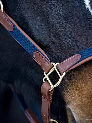 Halter + Lead Rope Chestnut/Navy X-FULL