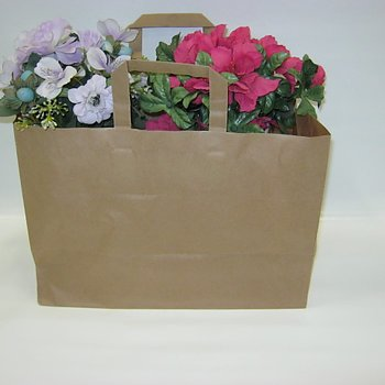 Pappersbärkasse - plant