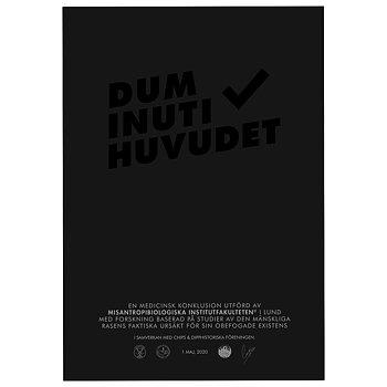 Dum Inuti Huvudet Ton-i-ton poster
